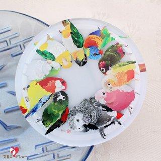 とりアート【ロリキート】アクリルコースター * 鮮やか中型インコ・オウムのサークル