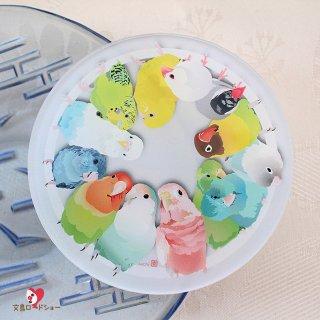 【大人気!】とりアート【ことりたち】アクリルコースター * 鮮やかインコ&文鳥のサークル