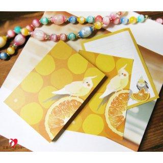 とりアート・ビタミンカラーの小鳥文房具/オカメインコ・メモ帳/オレンジ1冊