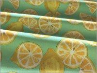 【シーチング 生地】レモンスライス*水彩*mint green*3C
