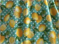 【オックス 生地】レモンと水玉*lemon*檸檬*mint whitedot*2B