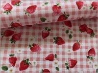 【スケア 生地】いちご苺×ギンガム*strawberry*pink*241C