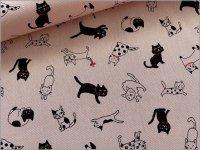 【CBポプリン 生地】白黒猫*pink black*2C