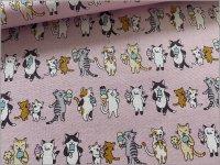 【スケア 生地】猫*アイスクリーム*ネコボーダー*sherbet pink*3B