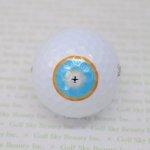 ゴルフボール タイガーウッズ使用球(6個)