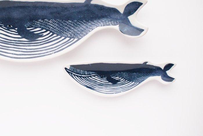 クジラの画像 p1_11