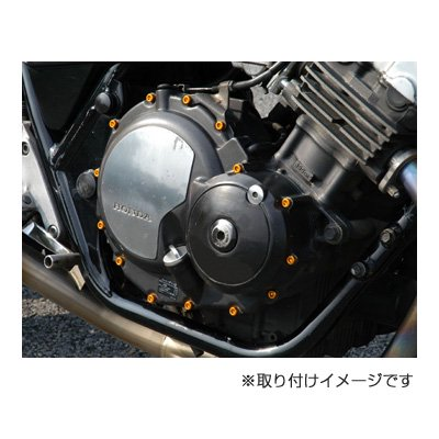 DBE206 27本セット / YAMAHA TT250R / RAID 用 その4