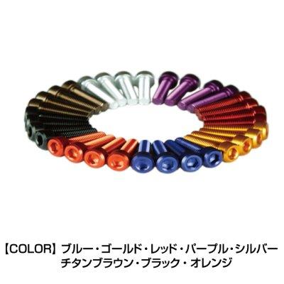 DBT004/2 タンクキャップ・ボルトKIT KAWASAKI 5本用
