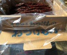[業務用] 山ごぼう 味噌漬け 1kg