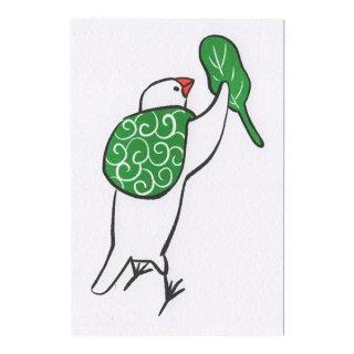 ポストカード(ふろしき文鳥A)12枚セット