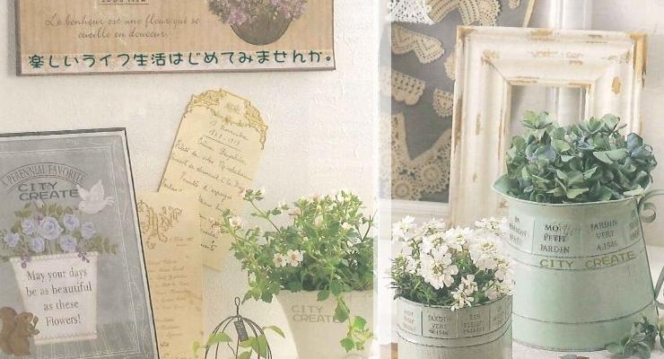 コチョウラン専門店 CITY CREATE 【 シティクリエイト 】 オンラインショップ