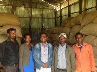 [9月20日以降配送]エチオピア  ジンマ フンダ・オリ・ウォッシングステーション  (Natural) 深煎り