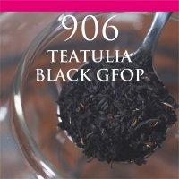 ティトゥーリア ブラック GFOP