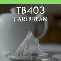 【Teabag】カリビアン 10P