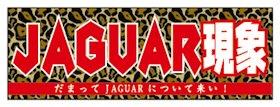 JAGUARさんステッカー JAGUAR現象 【だまってJAGUARについて来い!】