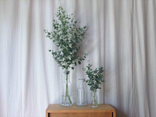 台所で:カラフェ/花瓶