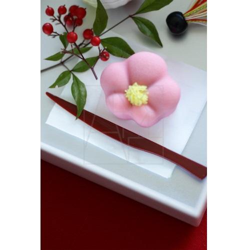【30%OFF】和菓子切 朱 5本セット