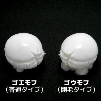 ゴエモンコシオリエビ 2タイプ(普通/剛毛) マグネット