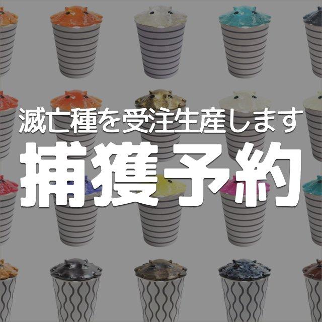 【捕獲予約】カップメンダコシリーズ28種
