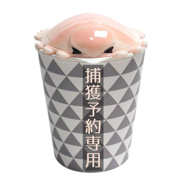 【捕獲予約】カップグソクムシ
