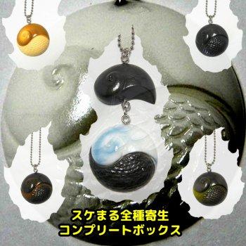 スケまる【全】コンプリートボックス(スケーリーフットキーチェーン)