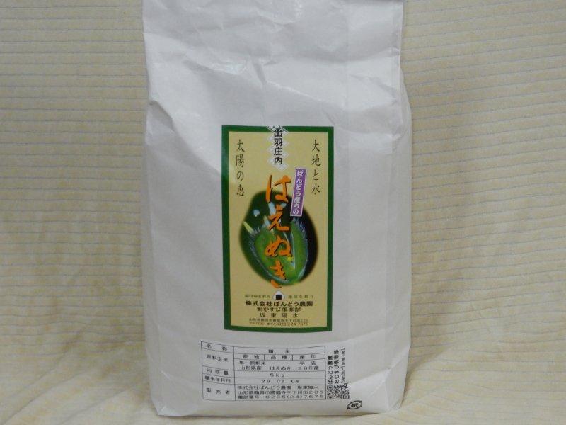 平成28年山形県鶴岡産特別栽培米 はえぬき 白米  5kg