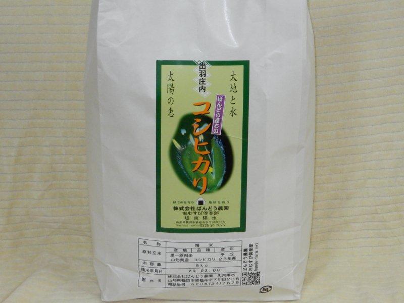 平成28年山形県鶴岡産特別栽培 コシヒカリ 白米   5kg