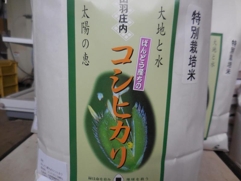 平成28年山形県鶴岡産 特別栽培米 コシヒカリ  白米  5kg