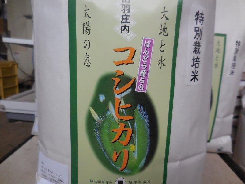 令和元年山形県鶴岡産 特別栽培米 コシヒカリ  白米  5kg