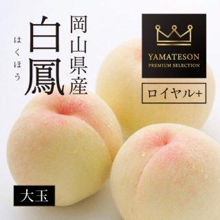 岡山県産 白鳳 YAMATESON PREMIUM SELECTION ロイヤル+ 【大】6玉