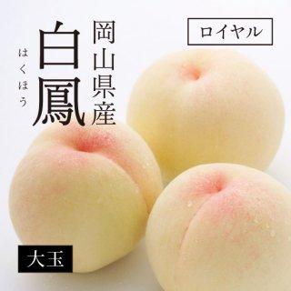 岡山県産 白鳳(白桃) ロイヤル 大玉11〜13玉