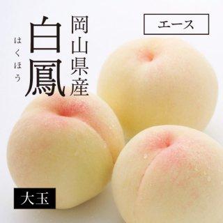 岡山県産 白鳳(白桃) エース 大玉11〜13玉