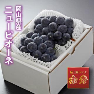 【大房】岡山県産ニューピオーネ 赤秀 2房