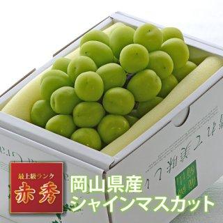 【只今シーズン中】岡山県産シャインマスカット 約800g大房【赤秀】
