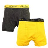 【Calvin Klein】ボクサーブリーフ 2枚パック (110-140cm) YL/GY