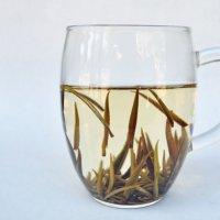 《有機JAS認定オーガニック》銀針白豪(ぎんしんはくごう)【白茶】/5g