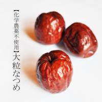 化学農薬不使用 大粒なつめ/40g