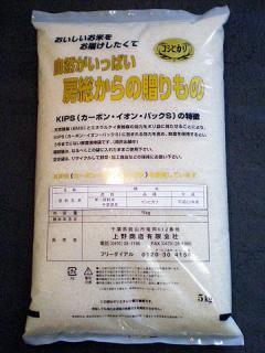 【新米】令和3年度産 コシヒカリ(5kg)白米