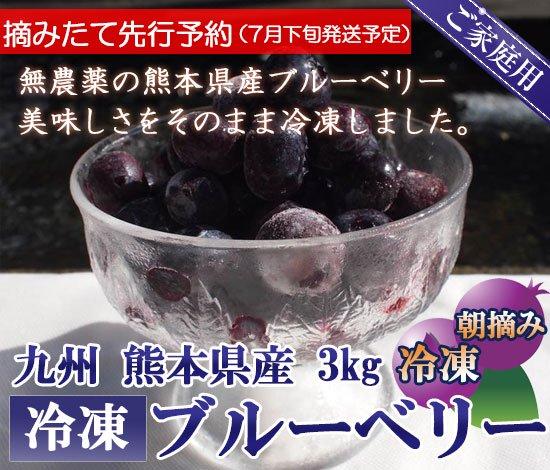 【先行予約】熊本産スムージー用大盛り冷凍ブルーベリー3キロ