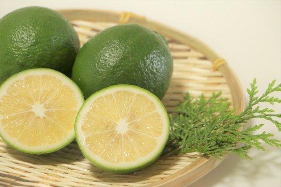 国産(熊本産)レモン3キロお取り寄せ