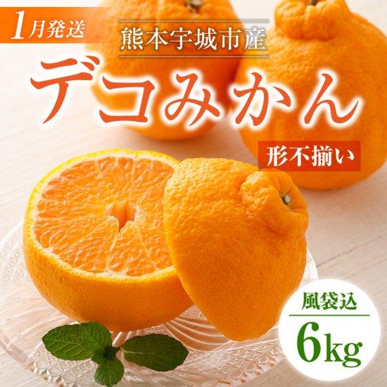 【訳アリ 形不揃い品】熊本宇城市産 デコみかん 6kg 風袋込み デコポンと同品種