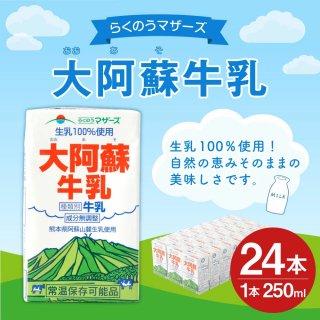 大阿蘇牛乳 24本 250ml×24本 1ケース