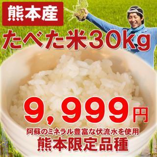 【赤字覚悟の特別価格】熊本産たべた米30キロ