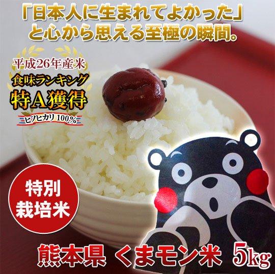 食味ランキング特Aくまモン米5キロ