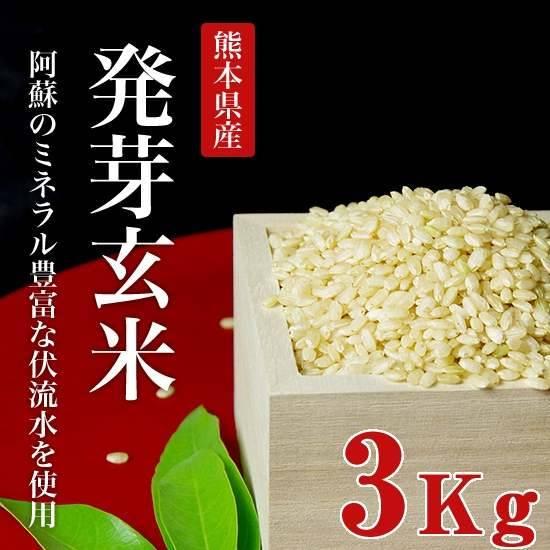 令和元年度産熊本産無農薬発芽玄米3kg