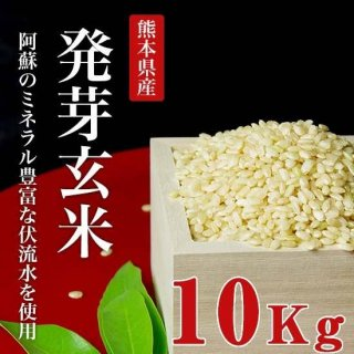 令和元年産熊本産無農薬発芽玄米10kg