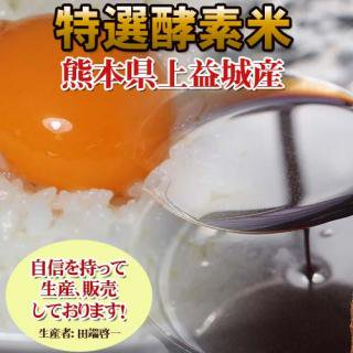 [定期購入12ヶ月]熊本産特選酵素米5キロ