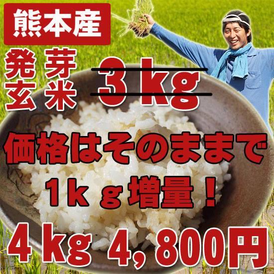 熊本産無農薬発芽玄米4kg