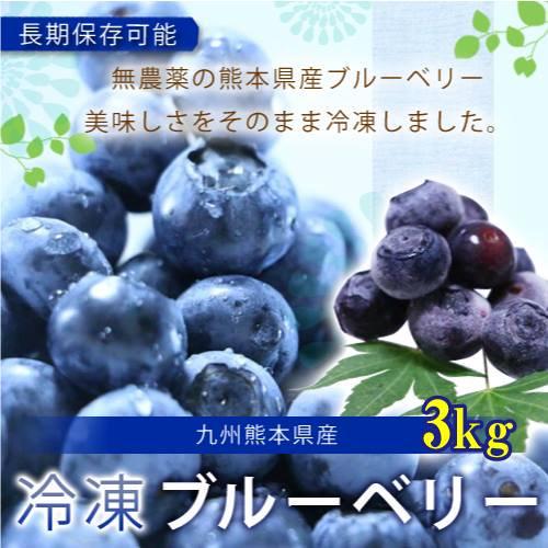 熊本産スムージー用大盛り冷凍ブルーベリー3キロ