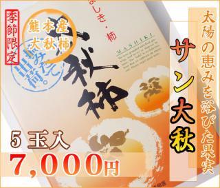 熊本産サン太秋柿5玉